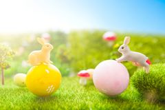 Conceito feliz de Easter Brinquedo dos coelhos da Páscoa na grama verde da mola Por do sol do conto de fadas no campo verde plást Imagens de Stock Royalty Free