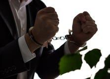 Conceito financeiro da fraude Homem de negócios, político ou homem imagens de stock