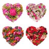 Conceito floral da colagem do coração das flores dos verões Imagens de Stock