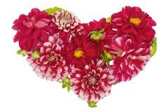 Conceito floral sangrento do coração imagem de stock
