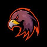 Conceito furioso do logotipo do vetor do esporte da águia isolado no fundo preto Foto de Stock Royalty Free