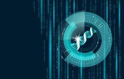 Conceito futuro da informática do código binário do ADN A estrutura da ciência do genoma alterou GMO que projeta o símbolo molecu ilustração royalty free