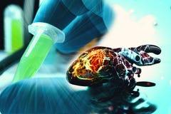 Conceito humano da saúde e da doença da lareira da anatomia do coração Fotografia de Stock