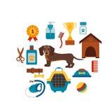 Conceito infografic do cão do Dachsund com elementos do cuidado do cão Foto de Stock Royalty Free