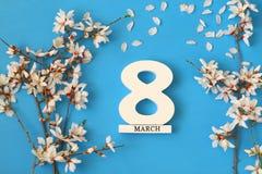 Conceito internacional do dia das mulheres Árvore e data de cereja Fotos de Stock Royalty Free