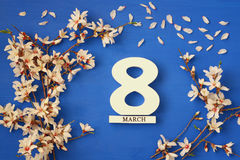 Conceito internacional do dia das mulheres Árvore e data de cereja Foto de Stock Royalty Free