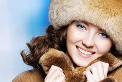 Conceito invernal imagem de stock royalty free