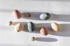 Conceito mínimo da celebração da Páscoa - ovos da páscoa naturalmente coloridos na luz solar direta dura na moda imagens de stock royalty free