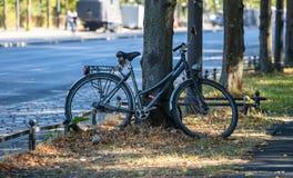 Conceito saudável do estilo de vida A bicicleta é estacionada e travada para a segurança em uma árvore Fundo do borrão imagens de stock