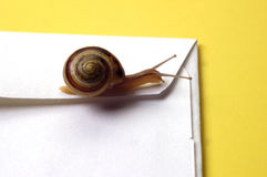 Conceito - snail mail Foto de Stock Royalty Free
