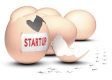 Conceito Startup do desenvolvimento Fotografia de Stock