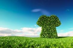 Conceito sustentável amigável da forma do comércio justo de Eco renderi 3D ilustração royalty free