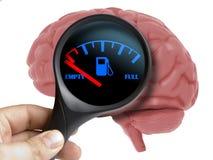Conceito vazio do cérebro humano da energia ilustração stock