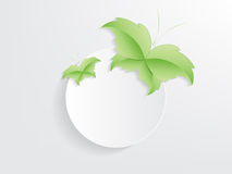 Conceito verde da folha da borboleta Fotografia de Stock Royalty Free