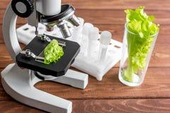 Conceito - verifique suplementos dietéticos no laboratório no microscópio Fotografia de Stock Royalty Free