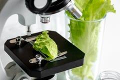 Conceito - verifique suplementos dietéticos no laboratório no microscópio fotos de stock