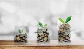 Conceitos crescentes do dinheiro, garrafa das moedas que aumentam com as plantas na tabela e no fundo de madeira de Bokeh fotos de stock