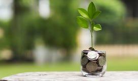 Conceitos do investimento Foto de Stock Royalty Free