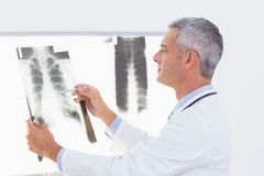 Concentrate doctor looking at X-Rays Stock Images