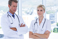 Concentrate doctors looking at camera. In medical office Royalty Free Stock Photography