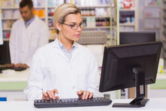Concentrate pharmacist using computer Stock Image