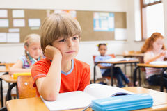 Concentrate pupils sitting at his desk Royalty Free Stock Photo
