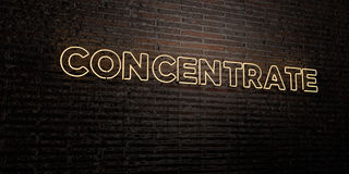 CONCENTRATE -Realistic Neon Sign on Brick Wall background - 3D rendered royalty free stock image Royalty Free Stock Photo