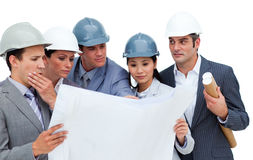 Concentrated architects studying blueprints Royalty Free Stock Images