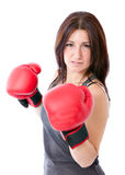 Concentrated attractive boxing woman Stock Photos