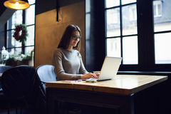 Concentrated attractive skilled female freelancer making distance job Stock Images