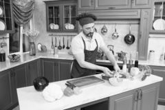Concentrated bearded cook making vegetable salad in kitchen stock photo