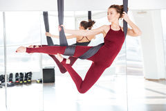 Concentrated beautiful young woman practicing different antigravity yoga positions royalty free stock photography