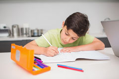 Concentrated boy doing homework in kitchen Royalty Free Stock Photo