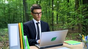 Concentrated business person working on laptop, energy efficiency concept. Stock photo stock photos