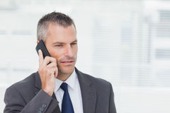 Concentrated businessman posing while having a phone call Stock Photography