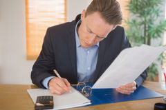 Concentrated businessman reading a document Stock Photos
