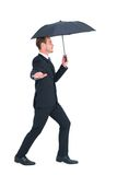 Concentrated businessman with umbrella walking Stock Image