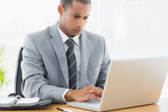 Concentrated businessman using laptop at office Stock Photo