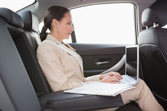 Concentrated businesswoman working in the back seat Royalty Free Stock Photography