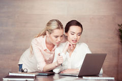 Concentrated businesswomen looking at laptop Stock Image