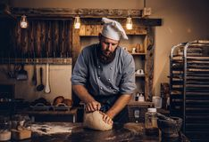Concentrated chef kneading dough in the kitchen. Professional baker preparing bread at a table in the bakery stock image