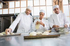Concentrated colleagues kneading uncooked dough Stock Image