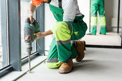 Concentrated constructor working with tool. Busy builder using drill. He squatting near instrument. Coworker standing nearby wall Stock Photos