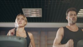 Concentrated couple running together on treadmill machine in gym club. stock video footage