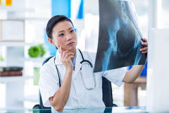 Concentrated doctor analyzing X-rays Royalty Free Stock Photos