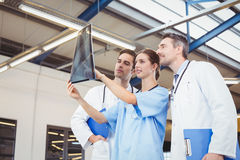 Concentrated doctors checking X-ray. While standing at hospital Stock Image