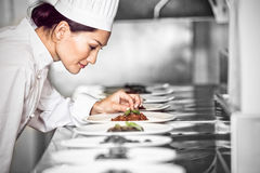 Concentrated female chef garnishing food in kitchen Royalty Free Stock Photography