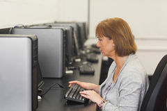 Concentrated female mature student sitting in computer class. Working on computer Royalty Free Stock Image
