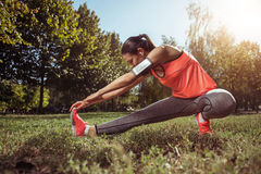 Concentrated girl enjoying morning exercises in the park Stock Photos