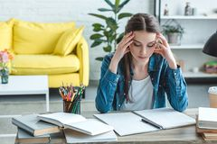 concentrated girl with headache sitting at desk and studying royalty free stock photography